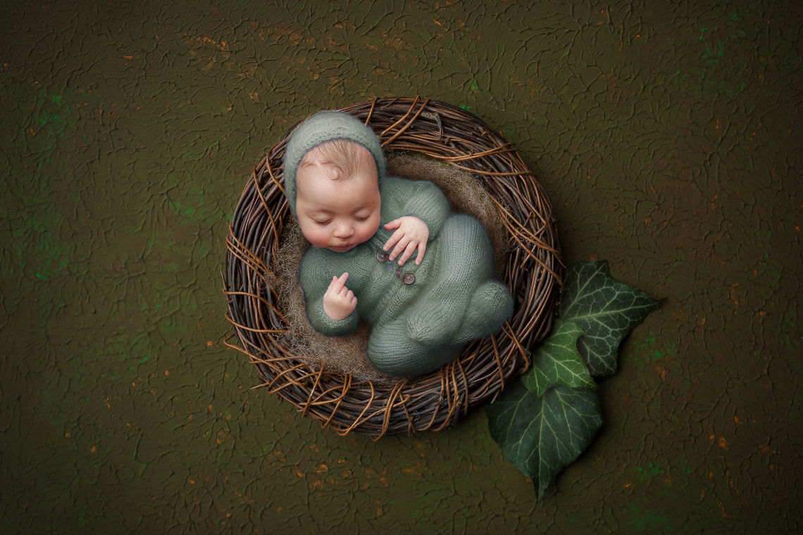 fotografie nou-nascut compusa digital ioana cos si frunze